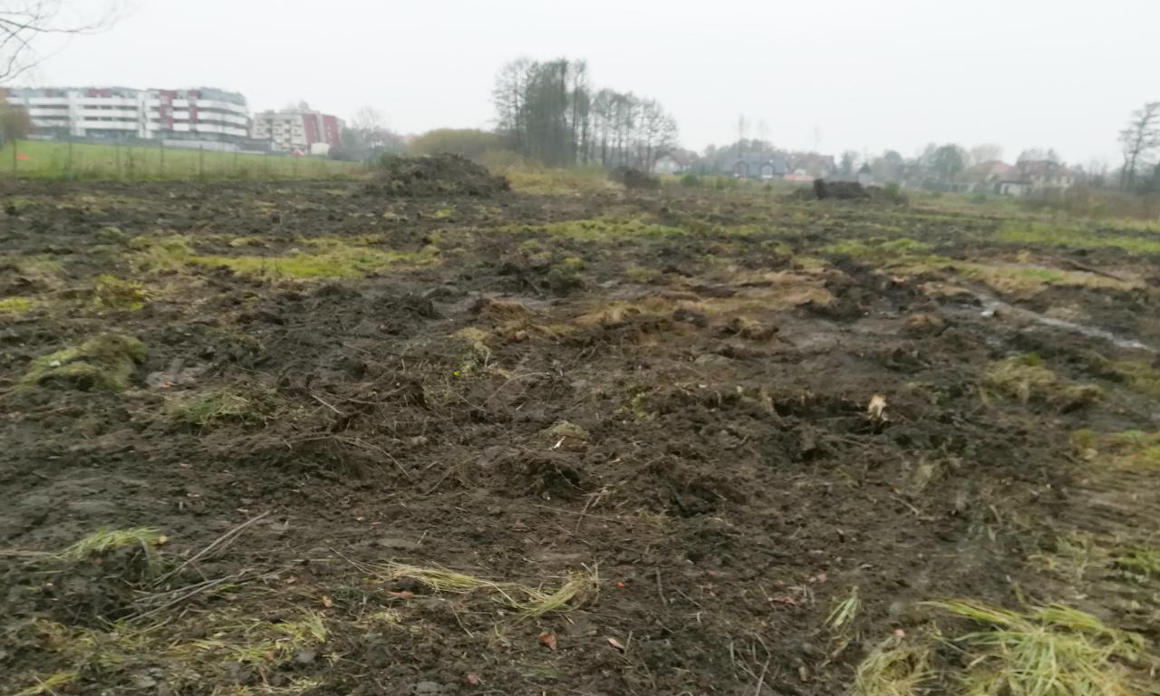 Kraków plantowanie terenu